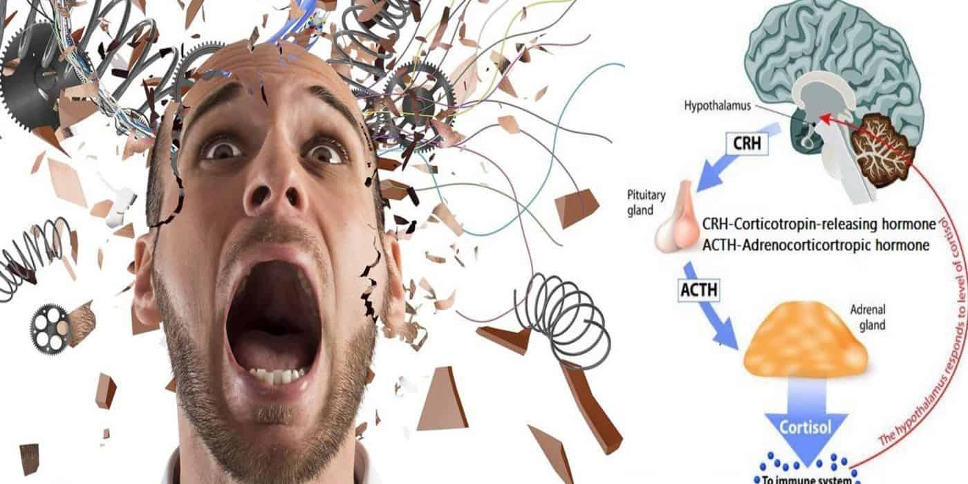 Хронический стресс,как с ним бороться