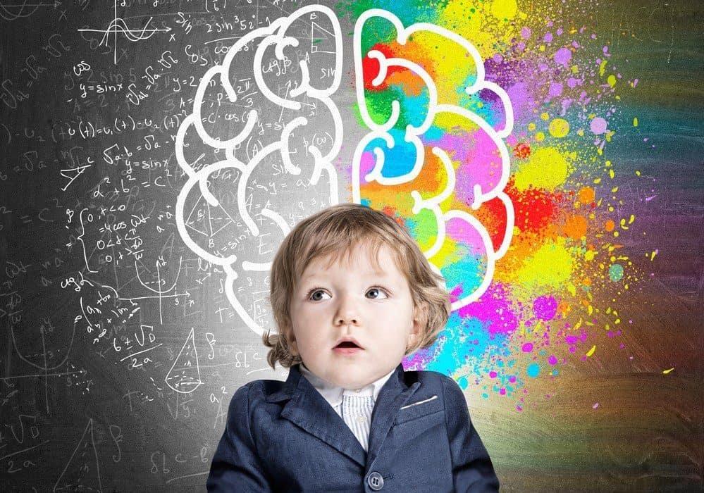 Развитие мозга у ребенка